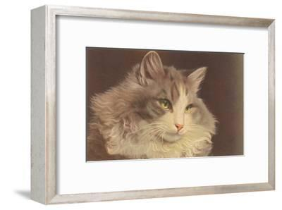 Fluffy Cat--Framed Art Print