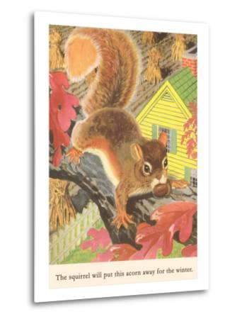 Squirrel with Acorn--Metal Print