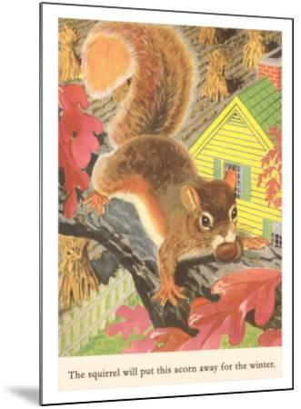 Squirrel with Acorn--Mounted Art Print