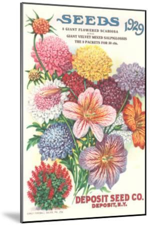 Seed Catalogue with Flower Assortment--Mounted Art Print