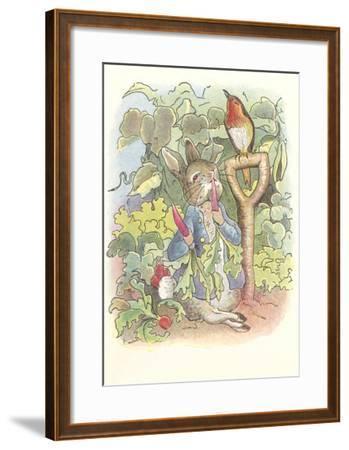 Rabbit with Singing Robin--Framed Art Print