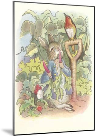 Rabbit with Singing Robin--Mounted Art Print