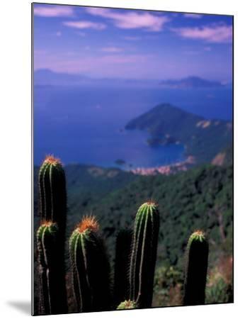View from Pico Do Papagaio, Ilha Grande, Rio De Janeiro State, Brazil-Julie Bendlin-Mounted Photographic Print