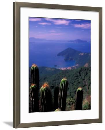View from Pico Do Papagaio, Ilha Grande, Rio De Janeiro State, Brazil-Julie Bendlin-Framed Photographic Print