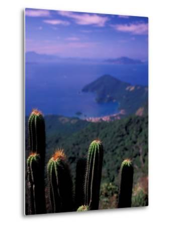 View from Pico Do Papagaio, Ilha Grande, Rio De Janeiro State, Brazil-Julie Bendlin-Metal Print