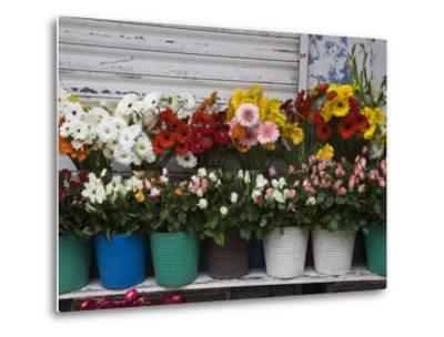 Flower Market, Port Louis, Mauritius-Walter Bibikow-Metal Print