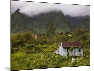 Small Creole-style cabin, Plaine-des-Palmistes, Reunion Island, France-Walter Bibikow-Mounted Photographic Print