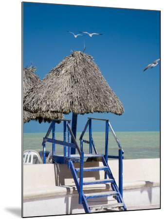 Steps Leading over the Seaside Boulevard, Progreso, Yucatan, Mexico-Julie Eggers-Mounted Photographic Print