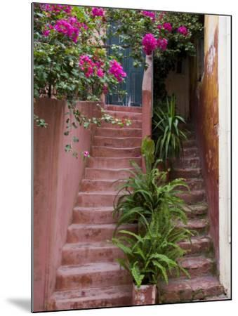 Colorful Stairways, Chania, Crete, Greece-Darrell Gulin-Mounted Photographic Print