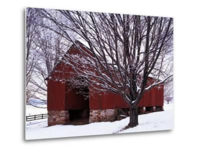 Barn and Maple after winter storm, Fairfax County, Virginia, USA-Charles Gurche-Metal Print