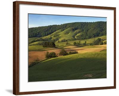 Fields of Burkes Garden, Virginia, USA-Charles Gurche-Framed Photographic Print