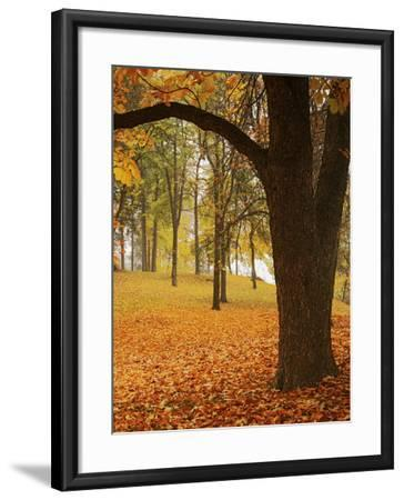 Autumn, Manito Park, Spokane, Washington, USA-Charles Gurche-Framed Photographic Print