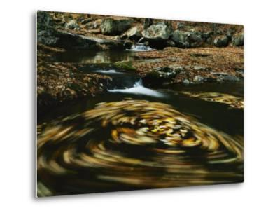 Leaves in whirlpool of Tye River near Blue Ridge Parkway, Appalachian Mountains, Virginia, USA-Charles Gurche-Metal Print