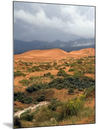 Storm at Coral Pink Sand Dunes State Park, Utah, USA-Diane Johnson-Mounted Photographic Print