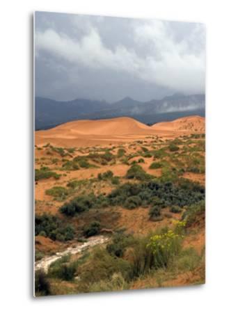 Storm at Coral Pink Sand Dunes State Park, Utah, USA-Diane Johnson-Metal Print
