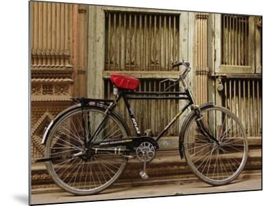 Bicycle in narrow gully, Delhi, India-Adam Jones-Mounted Photographic Print