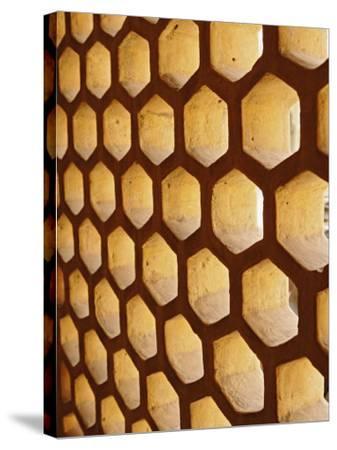 Architectural details, Amber Fort, Jaipur, India-Adam Jones-Stretched Canvas Print