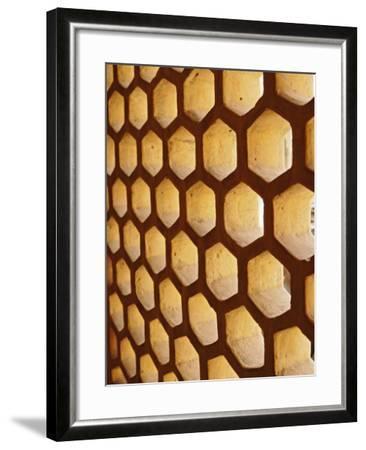 Architectural details, Amber Fort, Jaipur, India-Adam Jones-Framed Photographic Print