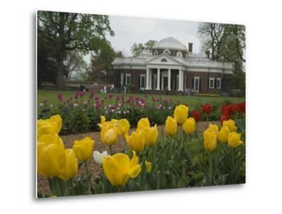 Tulips in Garden of Monticello, Virginia, USA-John & Lisa Merrill-Metal Print