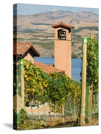 Mountains and Lake Chelan, Columbia Valley Appellation, Washington, USA-Janis Miglavs-Stretched Canvas Print