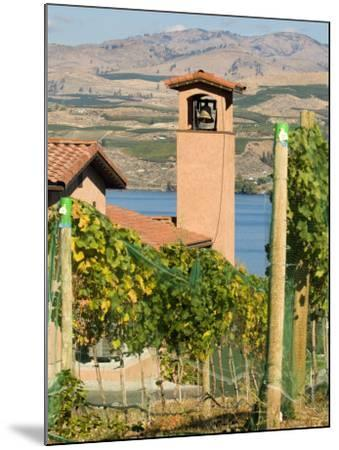Mountains and Lake Chelan, Columbia Valley Appellation, Washington, USA-Janis Miglavs-Mounted Photographic Print