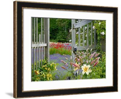 Garden Gate, Bainbridge Island, Washington, USA-Don Paulson-Framed Photographic Print