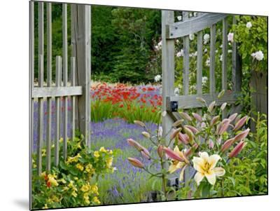 Garden Gate, Bainbridge Island, Washington, USA-Don Paulson-Mounted Photographic Print