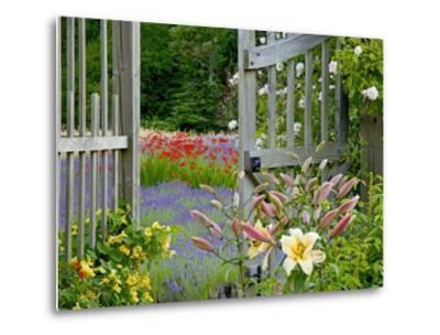 Garden Gate, Bainbridge Island, Washington, USA-Don Paulson-Metal Print