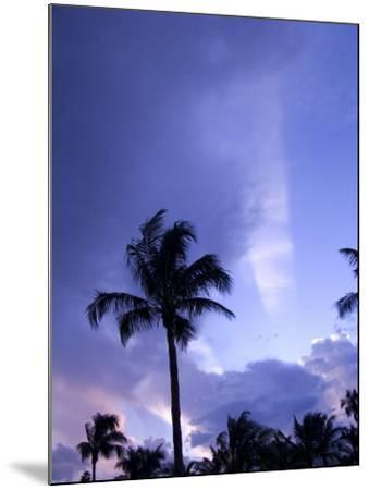 Sunset, Captiva Island, Florida-Maresa Pryor-Mounted Photographic Print