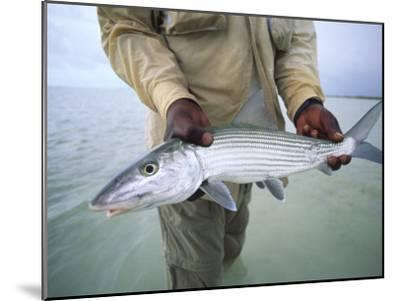Fisherman Holds Out a Bonefish Off Great Exuma Island-Michael Melford-Mounted Photographic Print