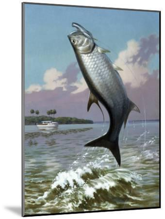 Tarpon Caught on Hook Leaps Out of Water, Fishing Boat Floats Nearby-Walter Weber-Mounted Photographic Print