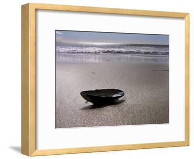 Mussel Shell Holding Water Near Surfs Edge on a Beach-White & Petteway-Framed Photographic Print