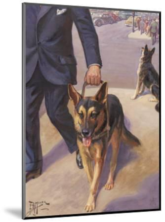 German Shepherd Works as a Seeing Eye Dog, Leading a Blind Man--Mounted Photographic Print