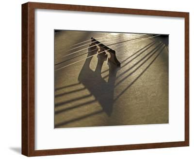 Bridge and Strings Cast Shadows across the Head of a Banjo-White & Petteway-Framed Photographic Print