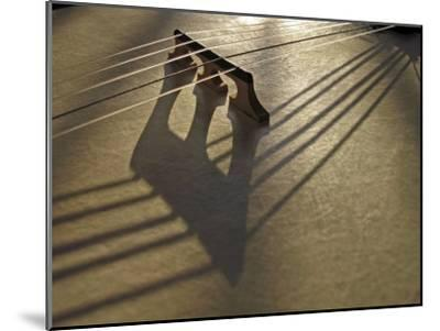 Bridge and Strings Cast Shadows across the Head of a Banjo-White & Petteway-Mounted Photographic Print