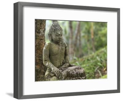 Tranquil Seated Buddha Statue in Bali's Lush Tropical Forest-xPacifica-Framed Photographic Print