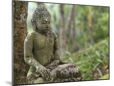 Tranquil Seated Buddha Statue in Bali's Lush Tropical Forest-xPacifica-Mounted Photographic Print