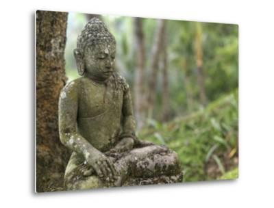 Tranquil Seated Buddha Statue in Bali's Lush Tropical Forest-xPacifica-Metal Print