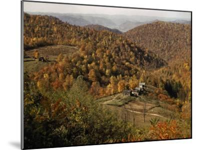 Scenic View of Farms Settled in a West Virginia Hillside Forest-B^ Anthony Stewart-Mounted Photographic Print
