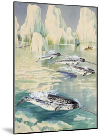 Narwhal Whales are Being Hunted by Eskimos-Else Bostelmann-Mounted Giclee Print