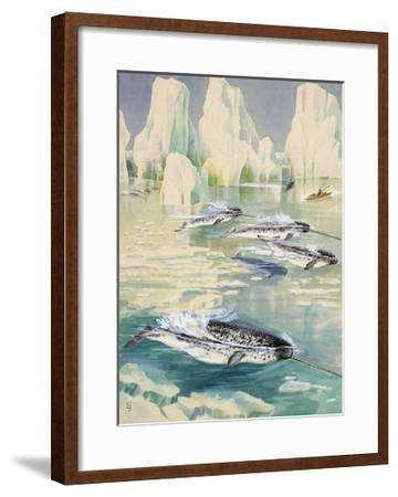 Narwhal Whales are Being Hunted by Eskimos-Else Bostelmann-Framed Giclee Print