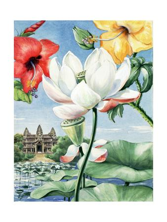 Rose-Of-China Hibiscus, East Indian Lotus, and Yellow Hibiscus-Else Bostelmann-Framed Giclee Print