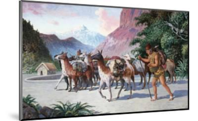 Llama Herders Drive their Pack, Loaded with Fine Textiles and Pottery-H.M. Herget-Mounted Giclee Print