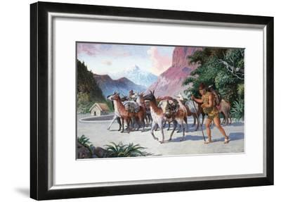 Llama Herders Drive their Pack, Loaded with Fine Textiles and Pottery-H.M. Herget-Framed Giclee Print