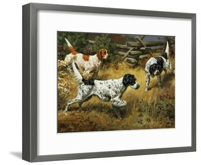Quail Hides in a Covert from Pointing English Setters-Walter Weber-Framed Photographic Print