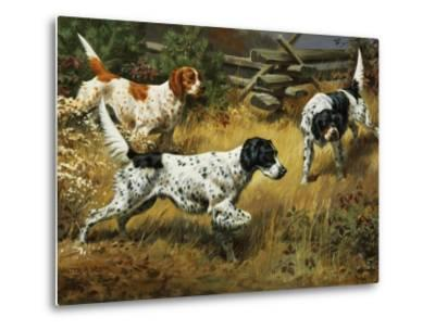 Quail Hides in a Covert from Pointing English Setters-Walter Weber-Metal Print