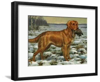 Golden Retriever Holds a Dead Bird in its Mouth-Walter Weber-Framed Photographic Print