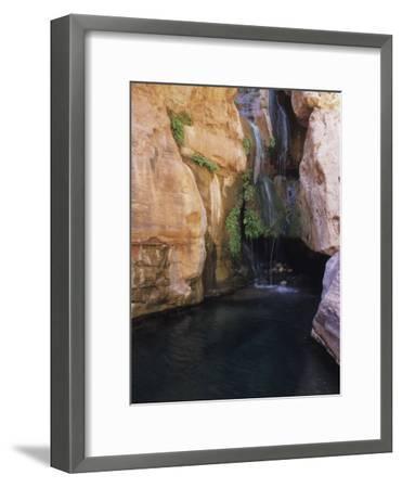 Elves Chasm,Grand Canyon National Park, Arizona-David Edwards-Framed Photographic Print