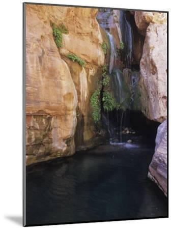 Elves Chasm,Grand Canyon National Park, Arizona-David Edwards-Mounted Photographic Print