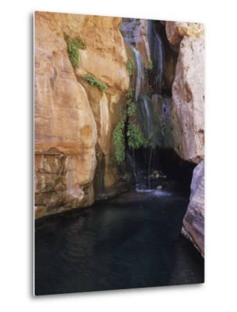 Elves Chasm,Grand Canyon National Park, Arizona-David Edwards-Metal Print